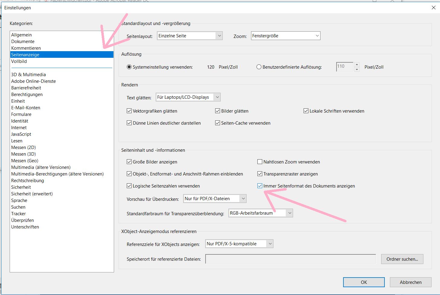 Seitenanzeige_Adobe Reader