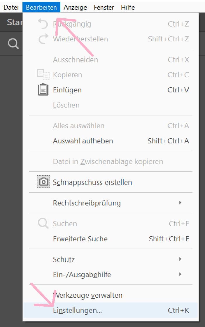 Seitenanzeige_Adobe Reader_1